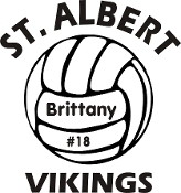 Vinyl sticker - Volleyball with name and number inside ball