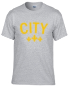 City sports gray tshirt with Gold logo