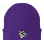 Louisville Male Alumni embroidered purple CP90 Knit Cap